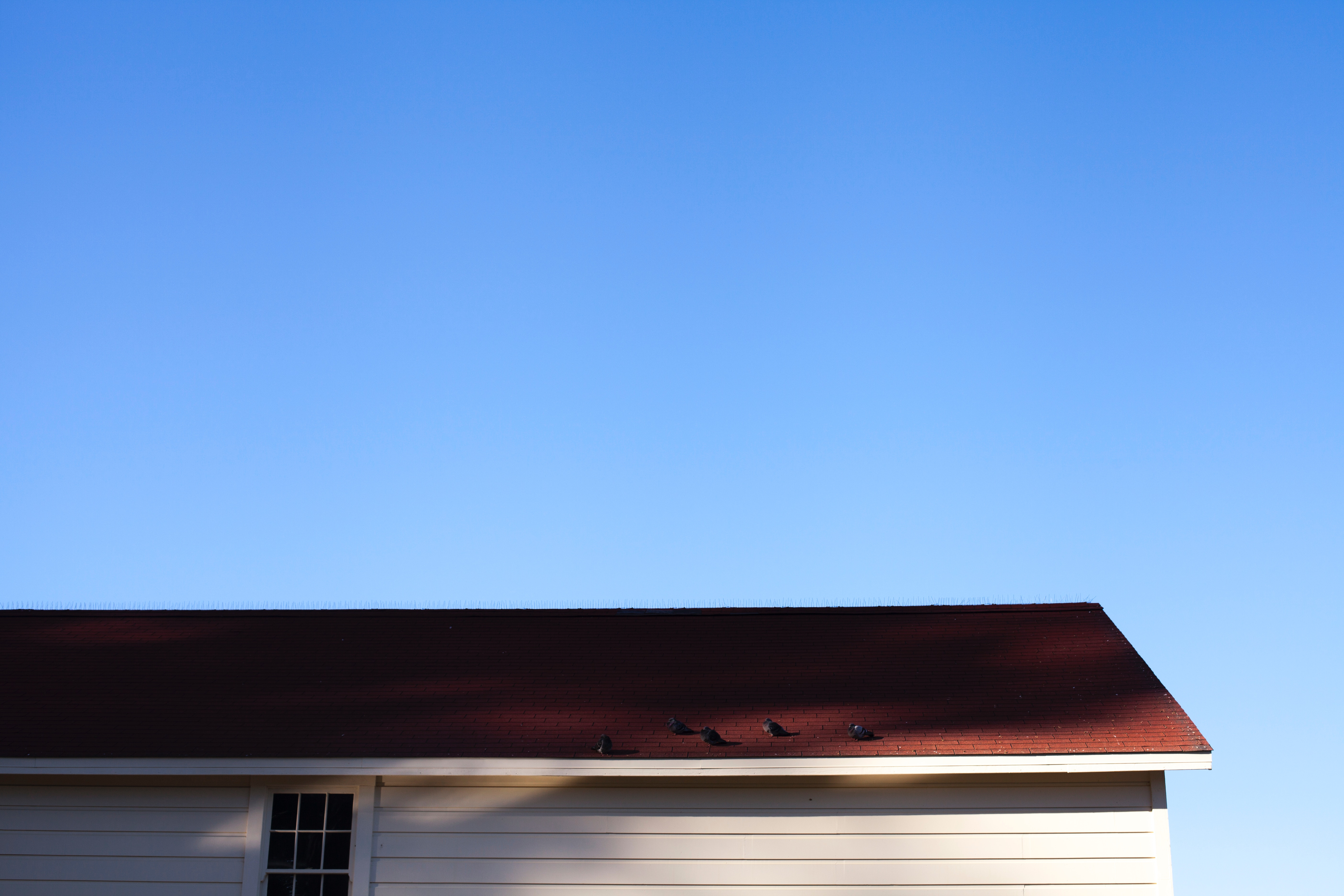 4 Signs Your Roof is in Bad Shape