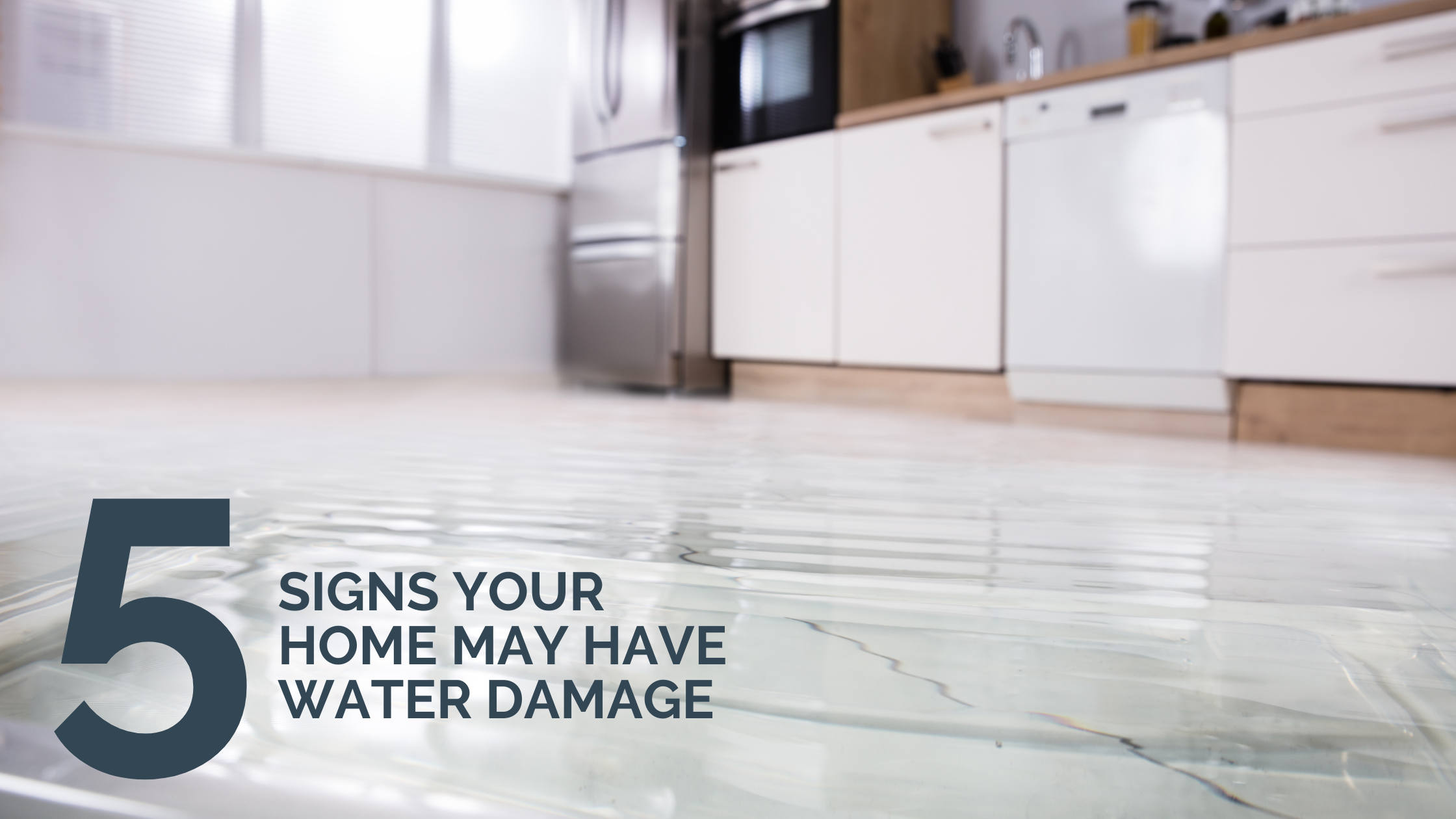 5 Signs Your Home May Have Water Damage