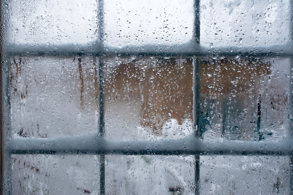 Mold Prevention During the Winter Months